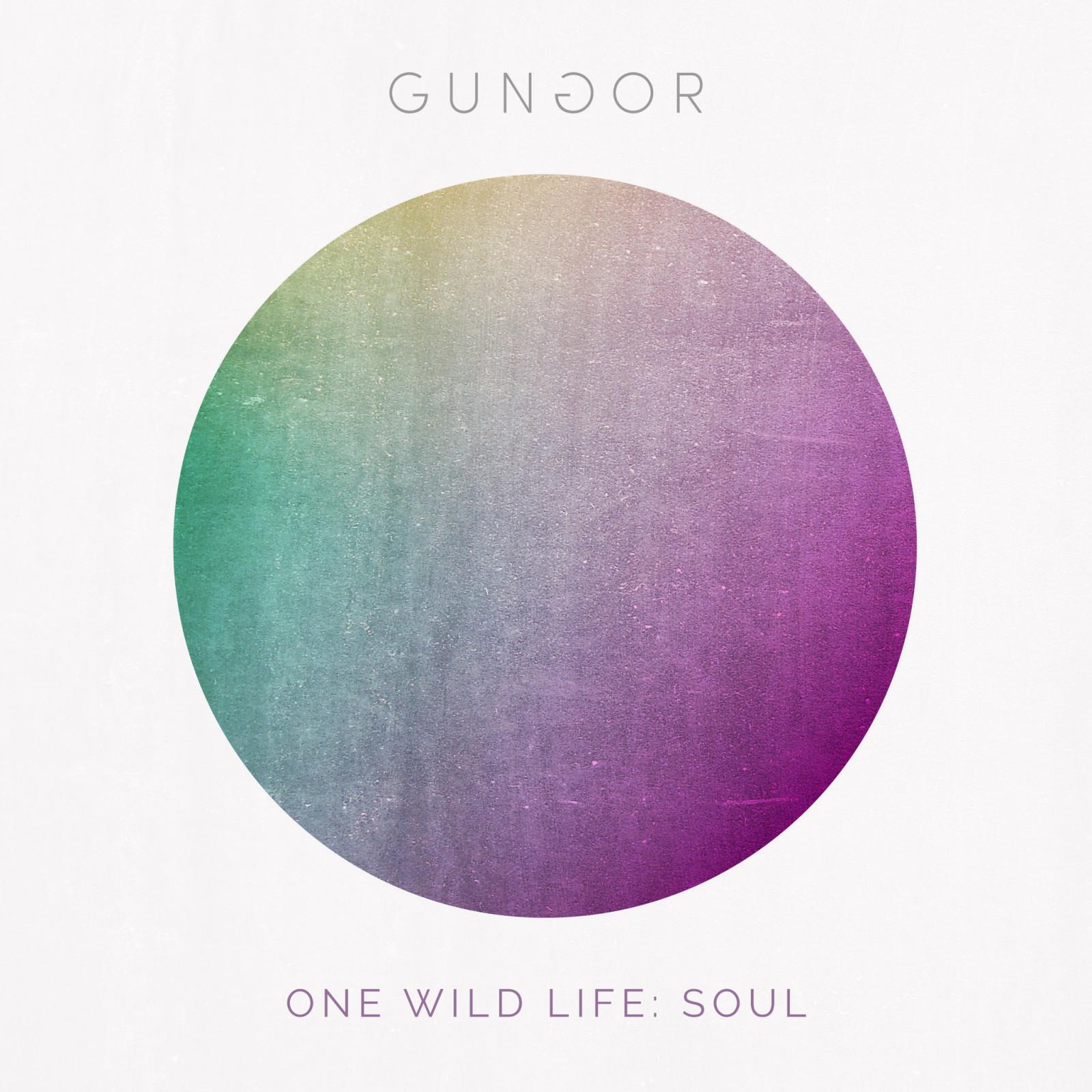 Gungor One Wild Life