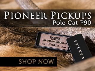 Pioneer Pole Cat P90 (SB1,2,3,4)
