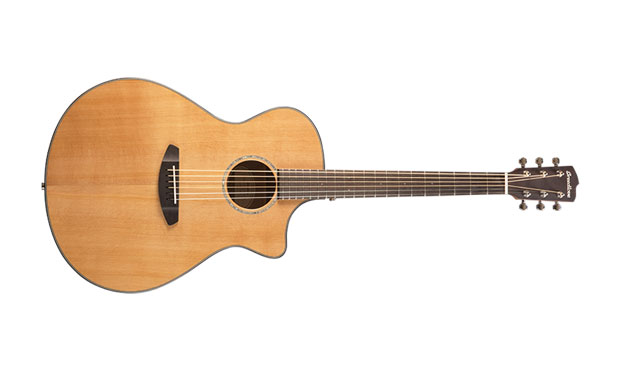 Breedlove Unveils Models for 2019